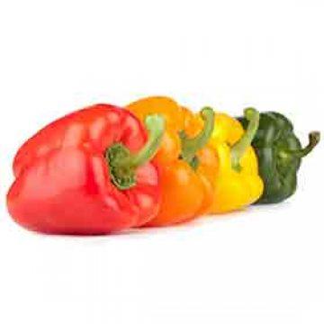 Bell Peppers (Capsicum)